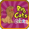 Big Cats Coloring