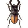 Mega Bugs