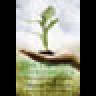 Organic Entrepreneur: Cultivating the Conscious Capitalist