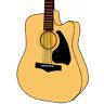DS Guitar Chord