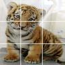 Baby Animals Jigsaw Puzzle