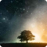 Artistic Tree Stars Lite LWP