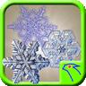 Snow Lock