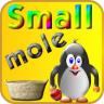Small mole