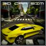 3DCarSim