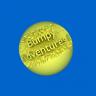 Bumpy Adventures I