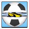 Goal Sweepstake