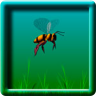 3D Animated Bee Flying