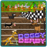 Doggy Derby