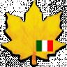 Learn Italian widget