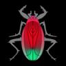Bug Fry