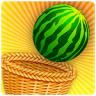 Basket Fruit