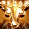 Texas Football FanZone Free