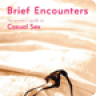 Brief Encounters: The Womens Guide to Casual Sex