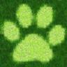 Animal Sports Sound Board