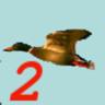 Birdhunt2