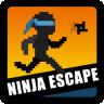 Ninja Escape
