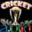 Cricket2011Pro