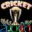 Cricket2011Pro