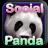 Social Panda