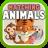 Matching Animals