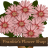 Frankie's Flower Shop