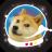 Star Doge