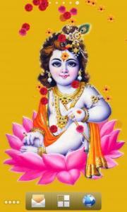 Krishna Aradhana