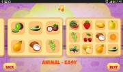 Puzzles Animal Fruit