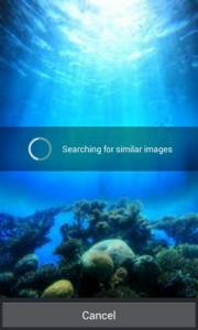 Similar Photo Search