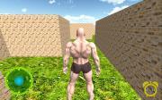 MazeBricks3D