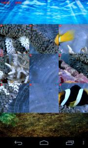 Fish Slide Puzzle