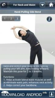 Stretch Exercises