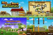 Big Eyed Bird Adventure