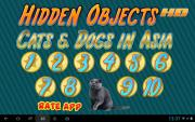 Hidden Objects HD: Cats & Dogs in Asia