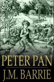 Peter Pan: Peter and Wendy