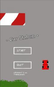 Car Slalom