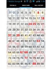 BingoCaller Free