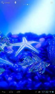 Pattern aquarium
