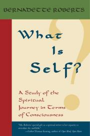 What Is Self?: A Study of the Spiritual Journey in Terms of Consciousness