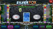 Silver Fox slot