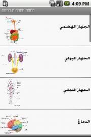 Anatomy Puzzles