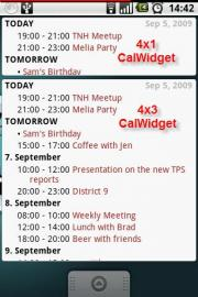 CalWidget