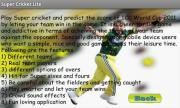 Super Cricket Lite