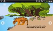 Tiger Night
