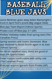 Baseball BlueJays