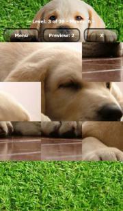 Puppies Puzzle
