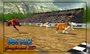 Dog Race Greyhound 3D