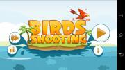 Birds Shooting