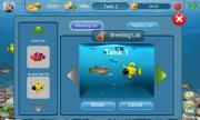 DreamFish